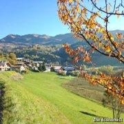 法国乡村人口增长重焕生机 城里人向往田园生活