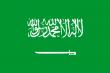 沙特阿拉伯人口数量2014-2015年_沙特阿拉伯人口数量