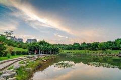 武汉常住人口_我省推进武汉城市圈同城化建设2025年常住人口城镇化率提高到