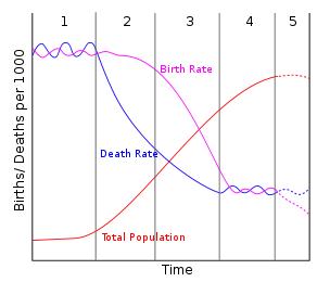 70亿世界人口是怎么来的