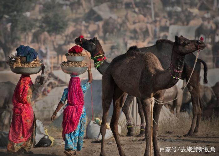 印度是世界人口第几大_此国是世界第二大黄种人国家,面积超印度,为何人口只